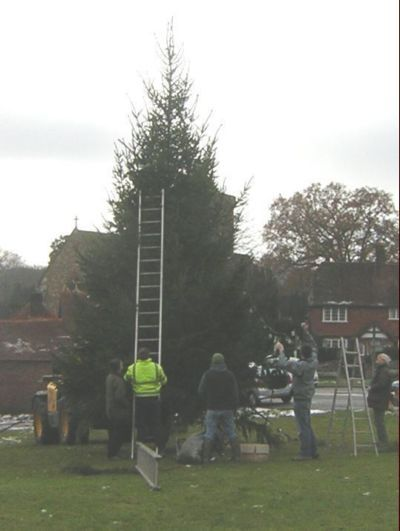Prople round tree putting on lights etc.