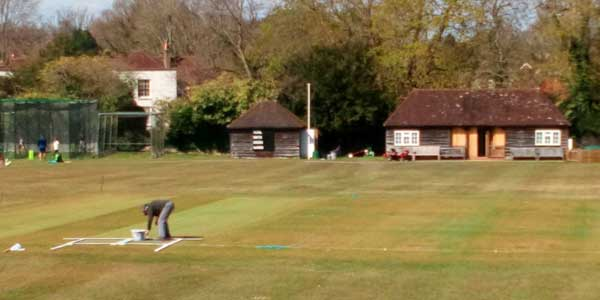 Man painting wickets on cricket pitch