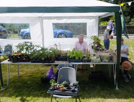 Chiddingfold Horticultural Society plant stall