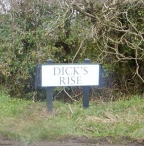 Road sign at Whites Hill reads Dicks Rise