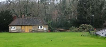 Cricket pavilion with pine lieing down next to it
